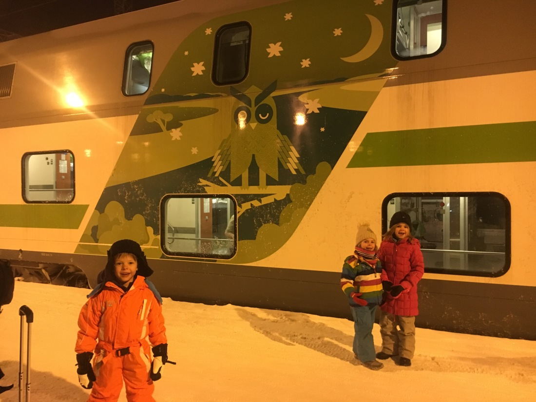 Lapland Budget Night train